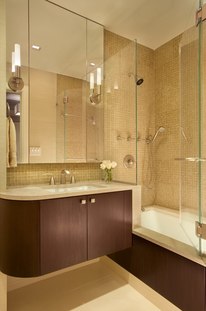 Bathtub Shower Combo Bathroom Contemporary with Bathroom Lighting Bathroom Mirror