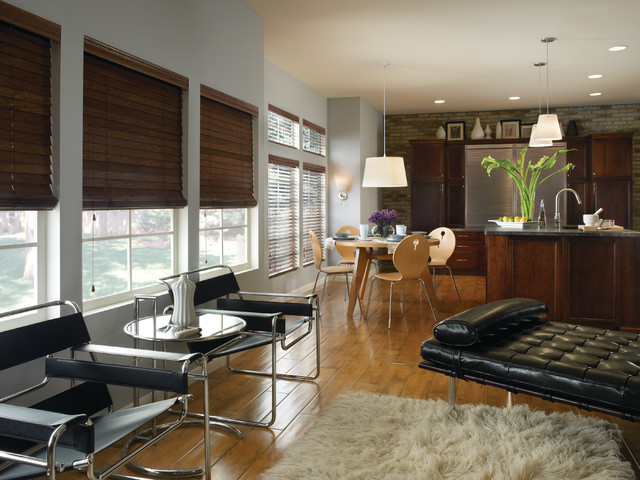 Blindsgalore Living Room Contemporary with Categoryliving Roomstylecontemporarylocationsan Diego