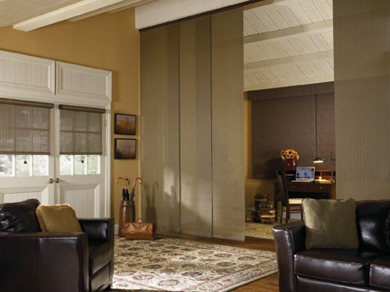 Blindsgalore Living Room Traditional with Living Room Panel Track