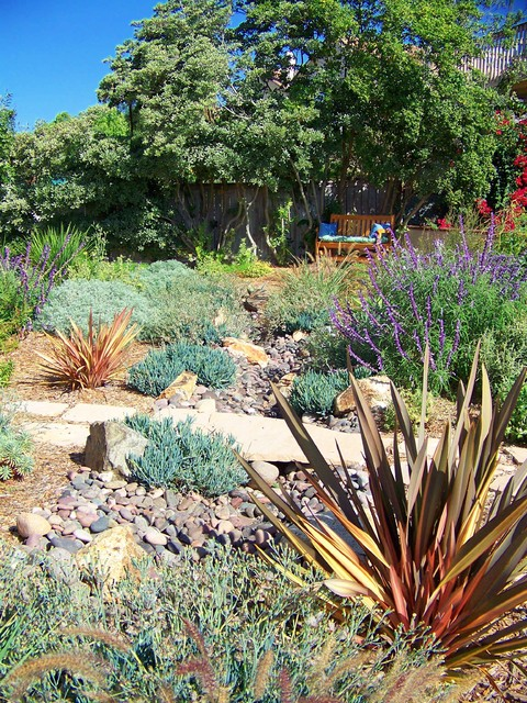 Drought Tolerant Landscaping Landscape Mediterranean with Arid Wood Fence Bark