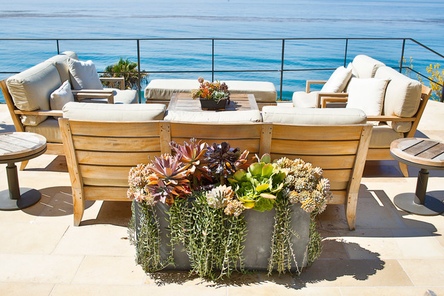 Drought Tolerant Landscaping Spaces Contemporary with Container Garden Drought Tolerant