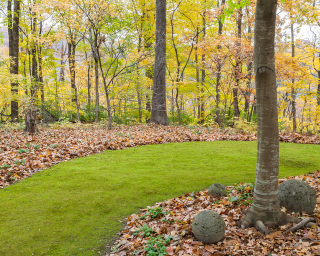 flagstone walkway Landscape Traditional with fall foliage lawn alternative