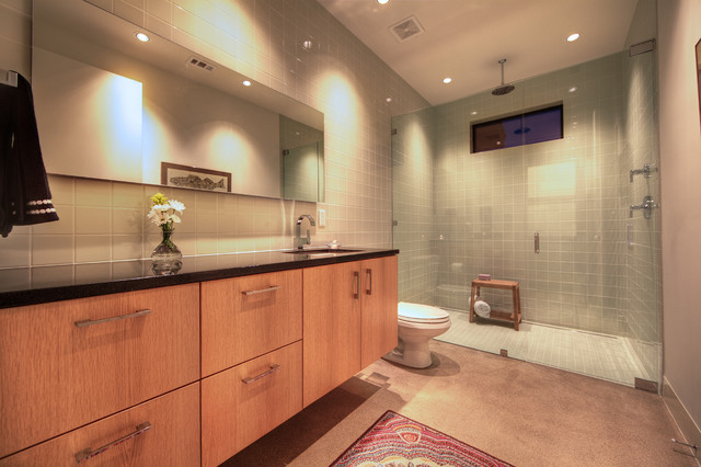 Frameless Shower Door Bathroom Contemporary with Bathroom Mirror Ceiling Lighting