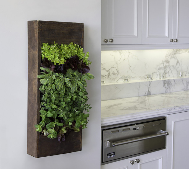 Glass Votive Holders Kitchen Contemporary with Frame and Panel Cabinets
