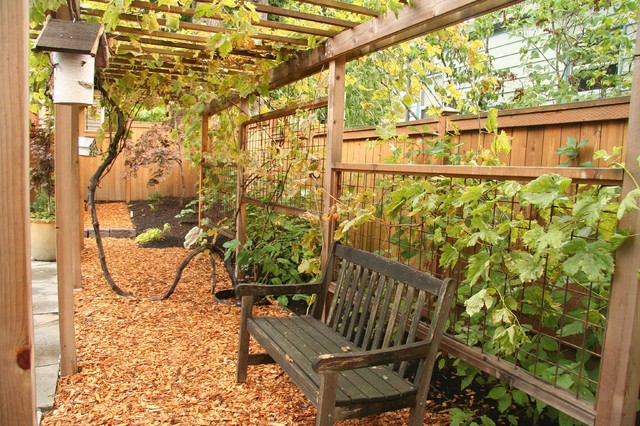 Grape Arbor Landscape Traditional with Arbor Backyard Bench Birdhouse