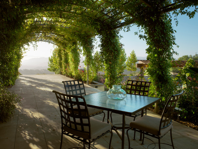 Grape Arbor Patio Mediterranean with Arbor Climbing Plants Covered