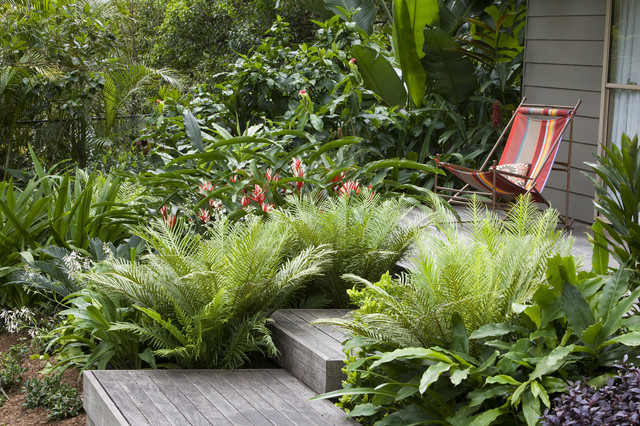 Hemisphere Furniture Landscape Tropical with Deck Lush Mass Plantings