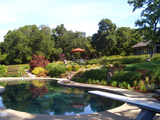 Keith Zars Pools Landscape Traditional with Boulders Grass Hillside Lawn