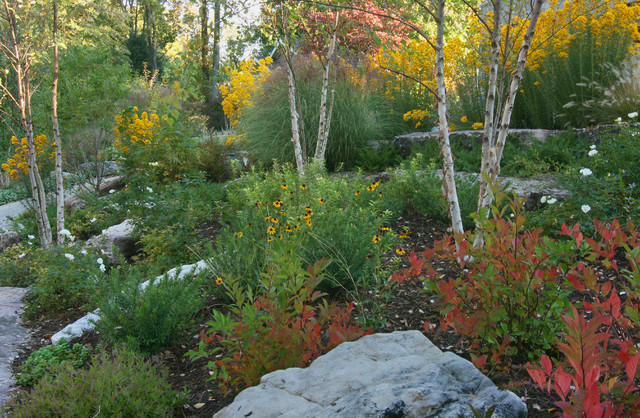 merrifield garden center Landscape Rustic with boulders erosion control fall