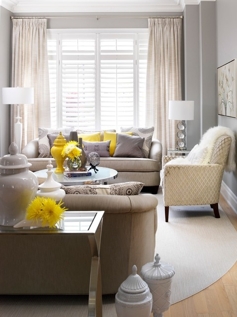 Pillow Inserts Living Room Transitional with Antique Loveseat Area Rug