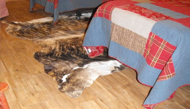 Quilted Bedspreads Bedroom Transitional with Animal Skin Rug Bedroom