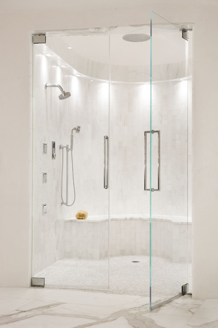 Starphire Glass Bathroom Transitional with Clear Glass Shower Door