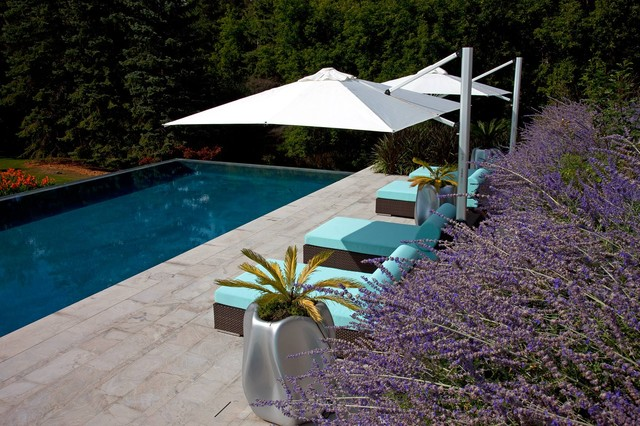 Umbrella Bases Pool Modern with Categorypoolstylemodernlocationtoronto