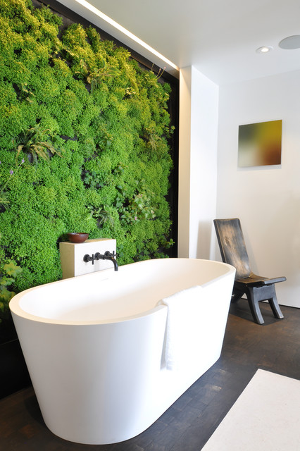 Vertical Bathtub Bathroom Contemporary with Accent Wall Bathroom Living