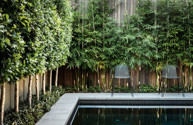 Bamboo Blinds Ikea Pool Modern with Anston Paving Stones