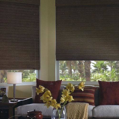 Blackout Blinds Family Room Traditional with Bamboo Blinds Bamboo Shades