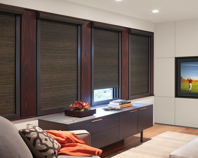Blackout Blinds Home Theater Contemporary with Abda Best Blackout Blinds1