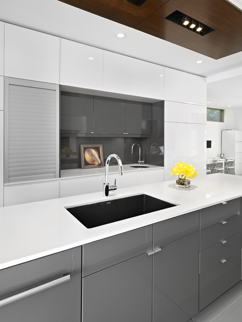 Blanco Sink Kitchen Modern with Appliance Drawer Bar Kitchen