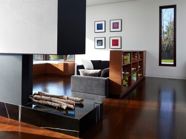 Bookcase Room Dividers Family Room Contemporary with Architecture Black Frames Black