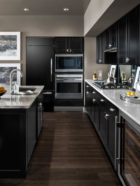 Cabinetstogo Kids Contemporary with Contemporary Cabinets Contemporary Kitchen