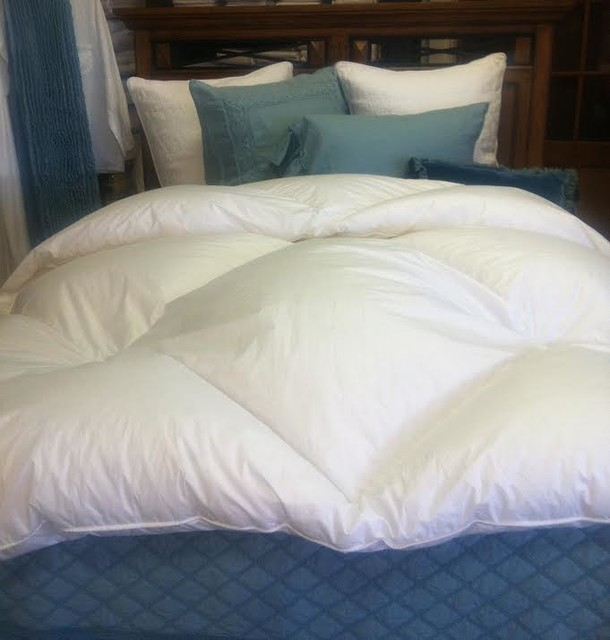 Comforters and Duvets Bedroom Traditional with Blue and White Bedding