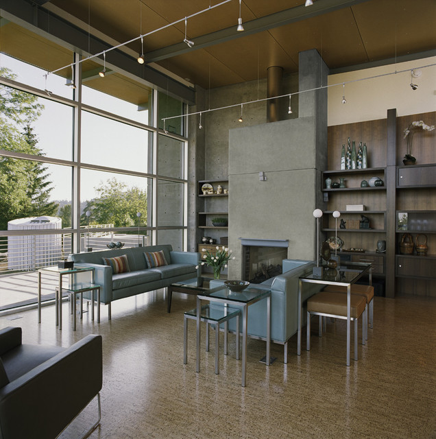Cork Flooring Pros and Cons Living Room Contemporary with Arcadia Windows Contemporary Furniture