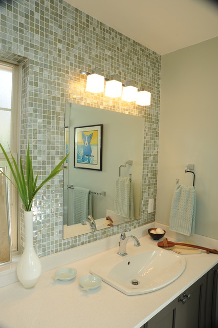 Delta Dryden Bathroom Contemporary with Bathroom Light Blue Dog