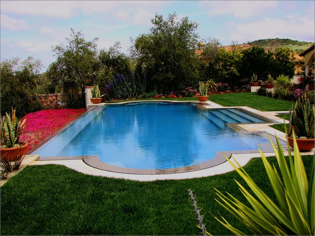 Diamond Brite Pool Mediterranean with Container Plants Disappearing Edge