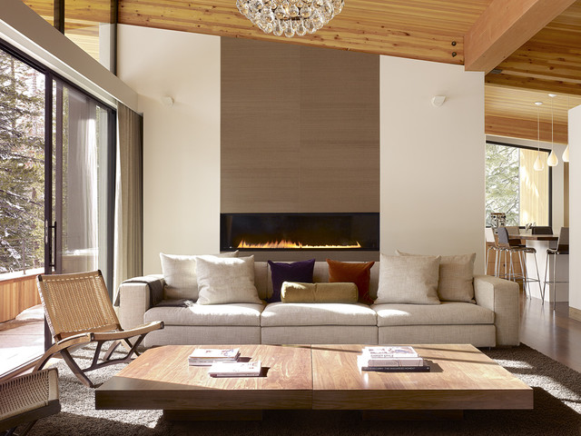direct vent gas fireplace Living Room Midcentury with area rug balcony cabin