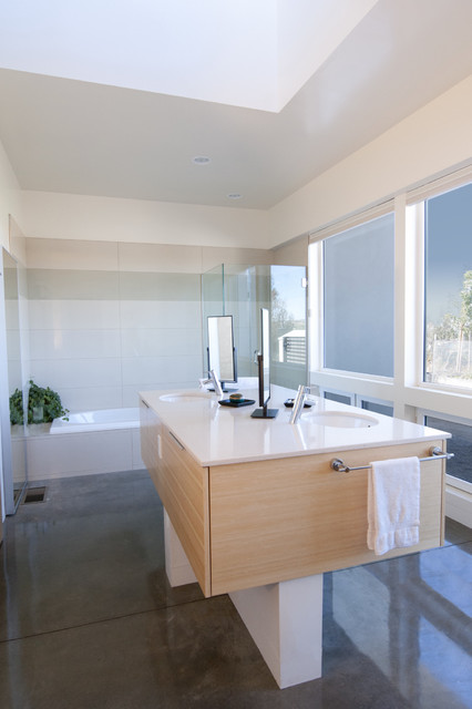 Drop Ceiling Tiles Bathroom Modern with Bamboo Double Sink Frosted