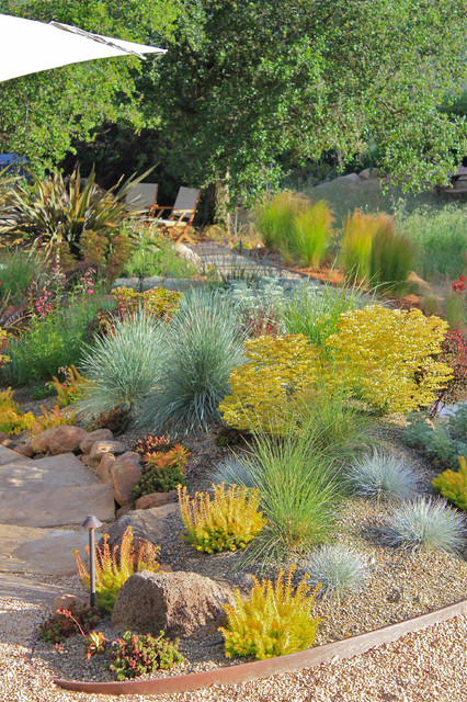 Drought Tolerant Landscaping Landscape Contemporary with Chartreuse Foliage Garden Lighting