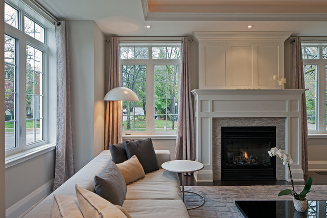 Fireplace Surround Ideas Living Room Transitional with Area Rug Coffee Table