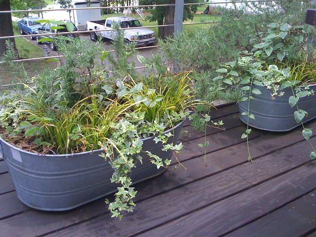 Galvanized Planters Spaces with Container Garden Modern Landscape