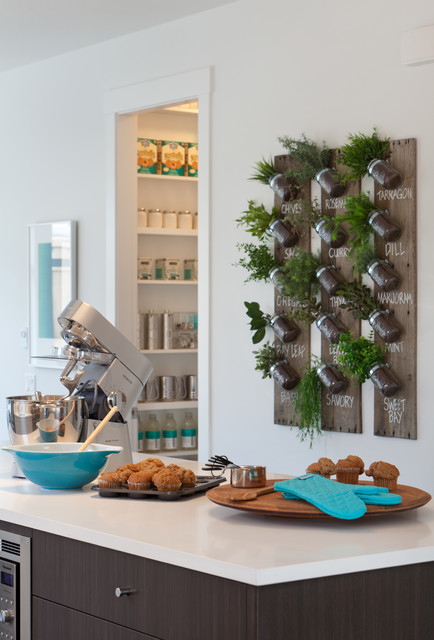 Glass Spice Jars Kitchen Contemporary with Dark Wood Flat Panel1