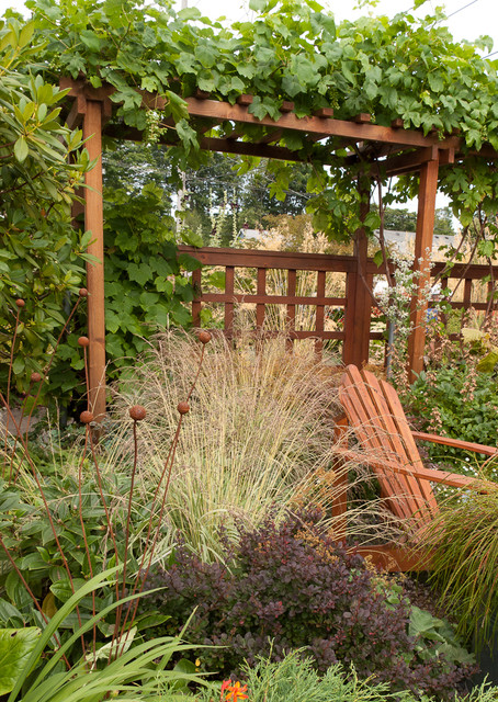 Grape Arbor Landscape Traditional with Adirondack Chair Arbor Backyard