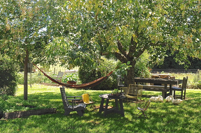 Hammock Frame Landscape Rustic with Dining Table and Bench