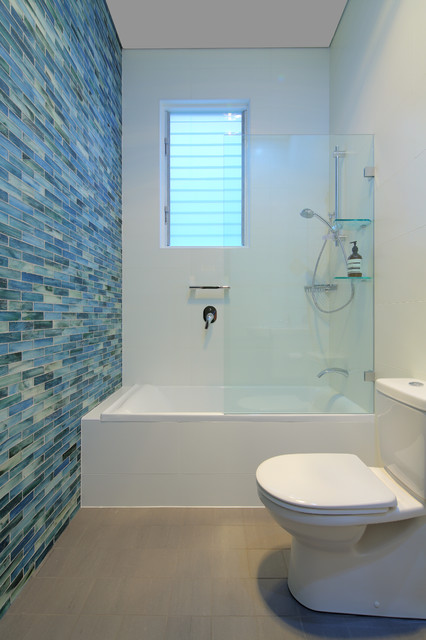 Hand Held Bidet Bathroom Contemporary with Blue and White Blue