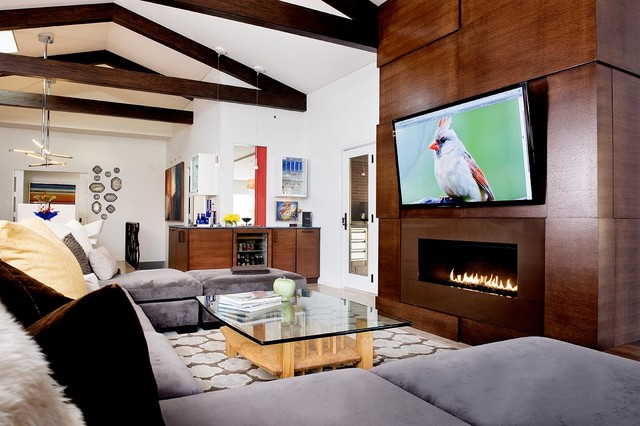 Heat and Glo Family Room Modern with Area Rug Fireplace With