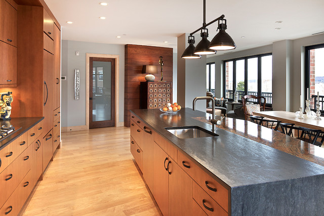 Honed Granite Kitchen Contemporary with Baseboards Ceiling Lighting Gray