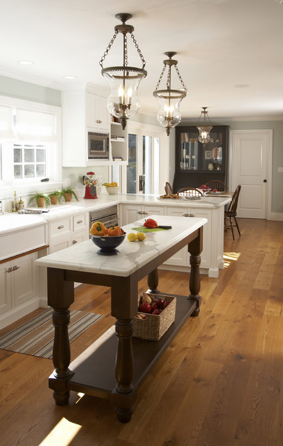 How Do You Get Rid of Fruit Flies Kitchen Traditional with Bay Area Architects Dark