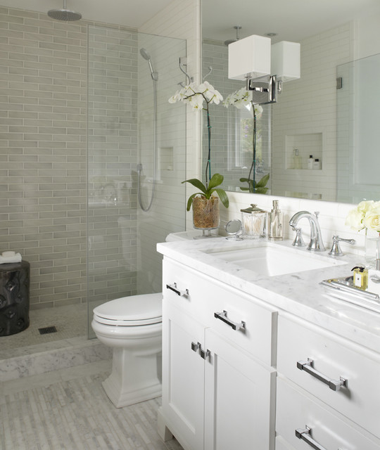 Kohler Memoirs Toilet Bathroom Transitional with Apothocary Jar Bathroom Ceramic