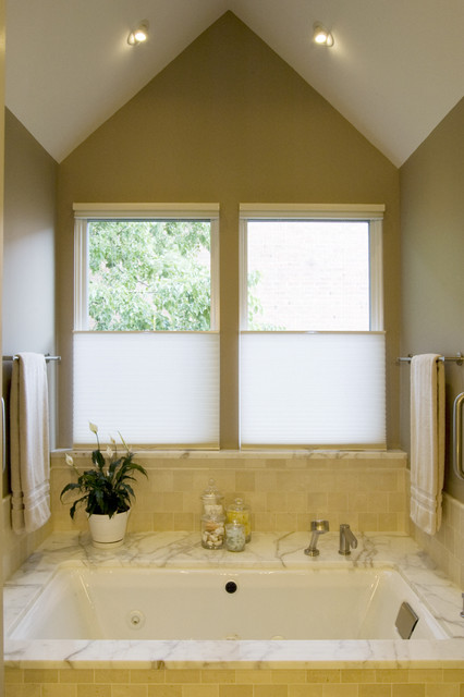 Levolor Cellular Shades Bathroom Contemporary with Ceiling Lighting House Plants