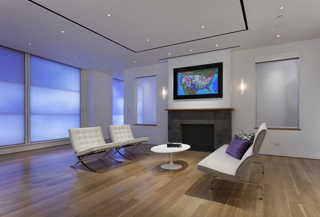Lutron Electronics Family Room Contemporary with Family Room Hide Tv