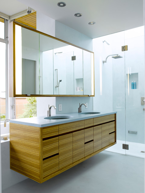 Mirrored Medicine Cabinet Bathroom Modern with Cantilever Clear Glass Shower
