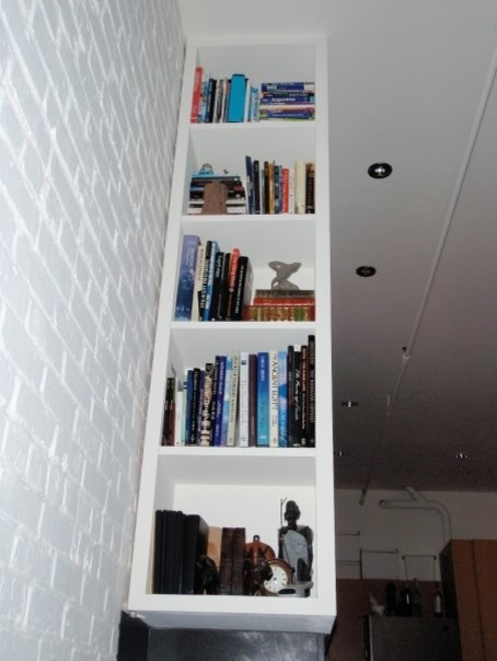 Narrow Bookcase Living Room Contemporary with Contemporary Design Fireplace Gas