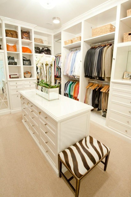 Portable Closets Closet Traditional with Built in Storage Ceiling