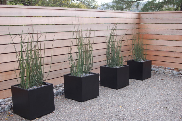 Shadow Box Fence Landscape Modern with Black Pots Fence Gravel