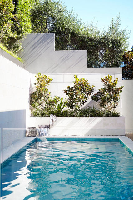 Shadow Box Fence Pool Contemporary with Beautiful Pools Concrete Render