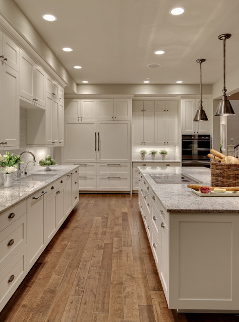 Shaker Cabinet Doors Kitchen Transitional with 10 Ft Ceiling Concetto