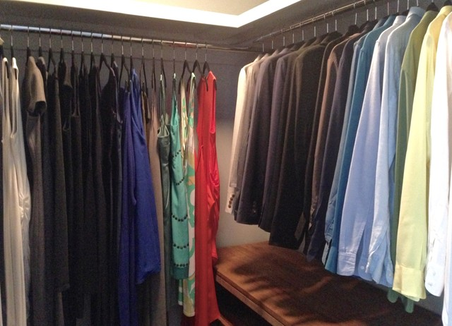 Shoe Closet Organizer Spaces Transitional with Blazers Blouses Dresses Storage